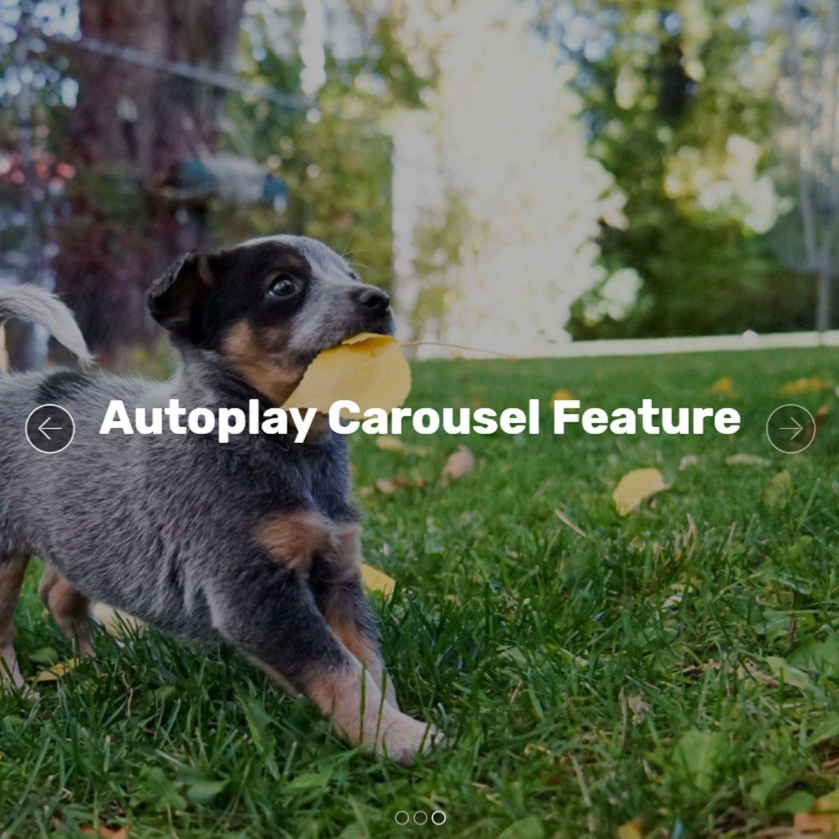 HTML5 Bootstrap Photo Slideshow